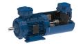 WEG1081_Bild1: Weltweite Flexibilität: Neuer modularer EUSAS-Motor / Global flexibility: New modular EUSAS motor