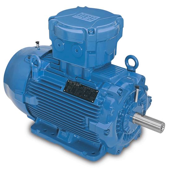 Explosion proof weg motors for any case for Weg motors technical support